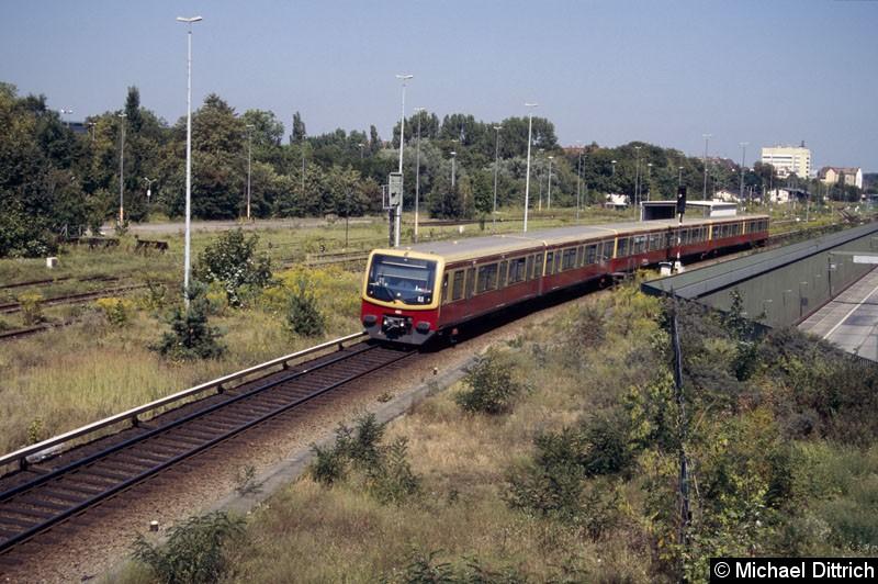Bild: 481 042 kurz hinter dem Bahnhof Tegel.