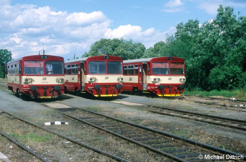 Bild: Treffen der Büchsen in Bor.  Hier die Büchsen 810 042, 810 018 und 810 676.
