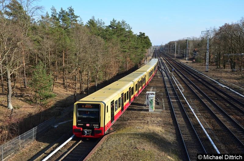 483 002 + 484 002 als Linie S3 bei der Einfahrt in Wuhlheide.