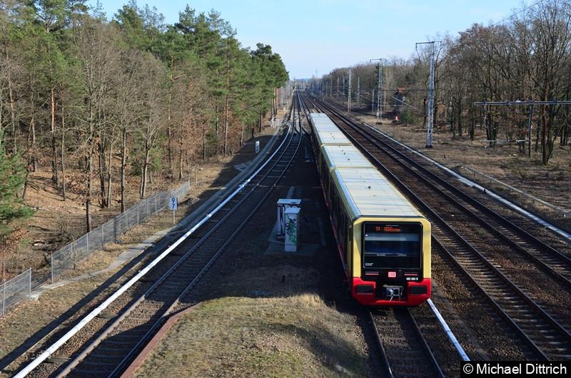 483 003 + 484 003 bei der Ausfahrt in Wuhlheide.