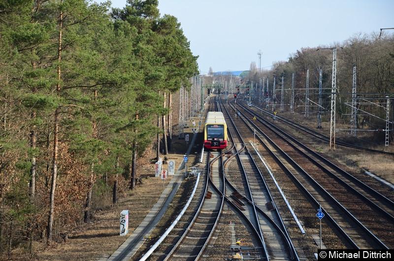 483 003 + 484 002 als Linie S3 zwischen Köpenick und Wiuhlheide.