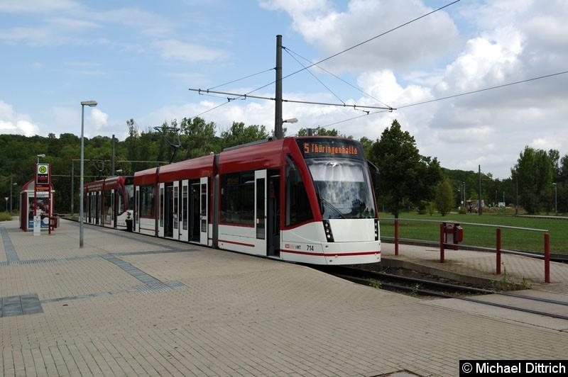 Bild: 714 + 706 als Linie 5 an der Endstelle Zoopark.