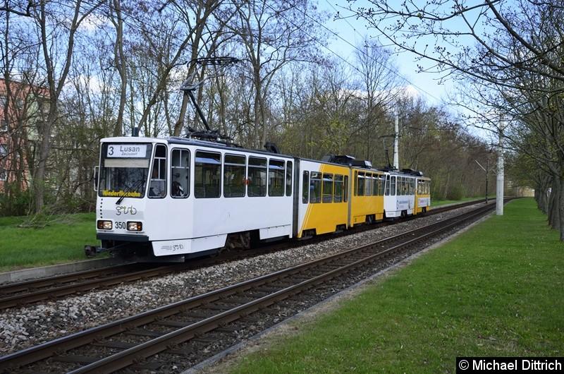 350 + 357 erreichen als Linie 3 die Endstelle Lusan, Zeulsdorf.