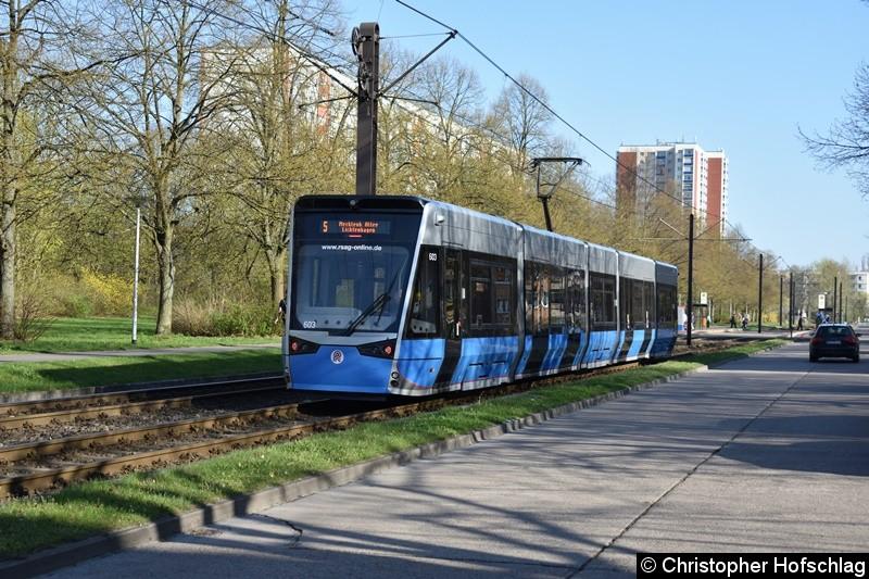 603 als Linie 5 zwischen den Haltestellen Warnowallee und Turkuer Str.