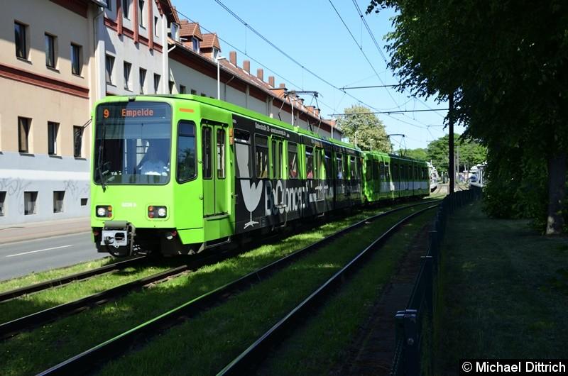 Bild: 6228 + 6136 als Linie 9 zwischen den Haltestellen Bauweg und Körtingsdorfer Weg.