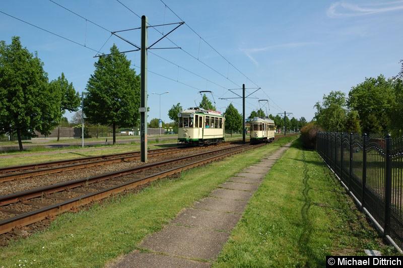Bild: Wagen 70 als Linie 77 anlässlich 30 Jahre Strecke nach Olvenstedt: Hier zwischen den Haltestellen Rennetal und Albert-Vater-Str., wo ihm der Wagen 124 entgegen kommt.