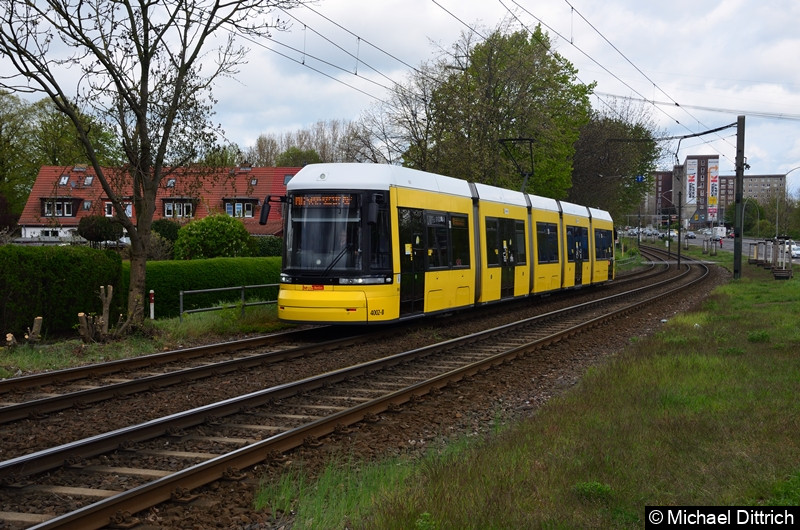 4002 als Linie M6 zwischen den Haltestellen Landsberger Allee/Rhinstr. und Dingelstädter Str.