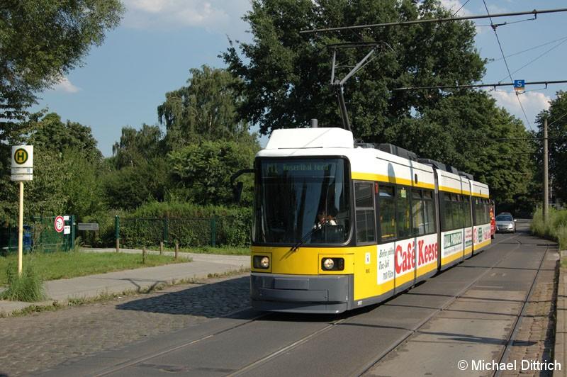 Bild: 1003 als Linie M1 an der Haltestelle Rosenthal Nord.