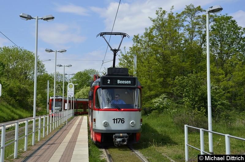 Sonderfahrt mit 1176 + 204: In der Abfahrtshaltestelle Soltauer Straße.