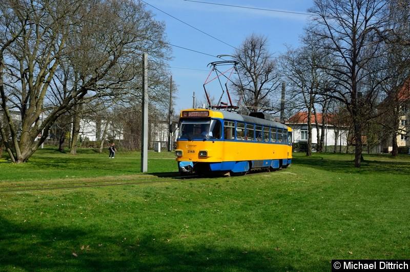 2149+2062+930 im Park Naunhofer Str.