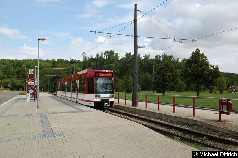 Bild: Der modernisierte MGT6D 603 als Linie 5 an der Endstelle Zoopark.