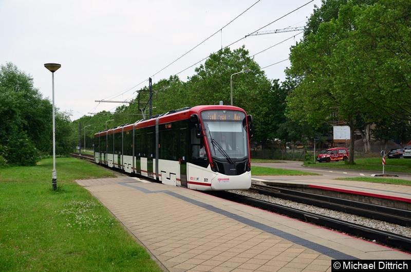 Auf dem Rückweg vom Wiesenhügel erreicht 801 die Haltestelle Färberwaidweg.