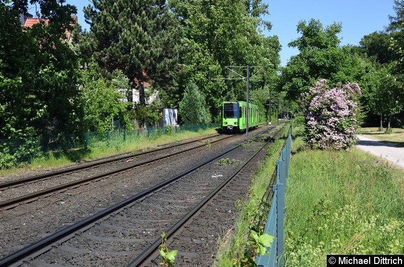 Bild: 6224 als Linie 8 zwischen den Haltestellen Am Mittelfelde und Messe/Nord.