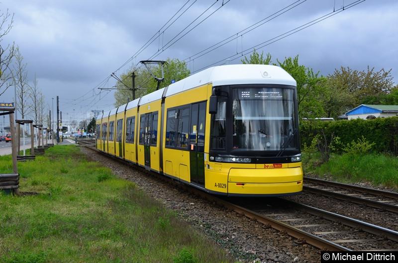 8029 als Linie M6 zwischen den Haltestellen Landsberger Allee/Rhinstr. und Dingelstädter Str.