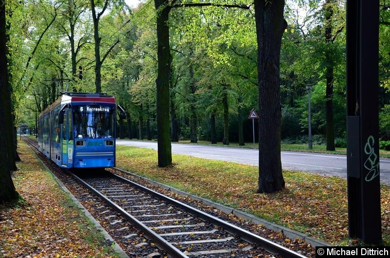 1344 als Linie 6 in der Herrenkrugstraße auf dem Weg zur Endstelle Herrenkrug.