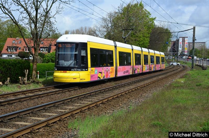 8023 als Linie M6 zwischen den Haltestellen Landsberger Allee/Rhinstr. und Dingelstädter Str.