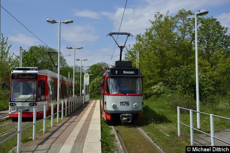 Sonderfahrt mit 1176 + 204: In der Abfahrtshaltestelle Soltauer Straße, wo sich der 629 als Linie 2 dazu gesellt.