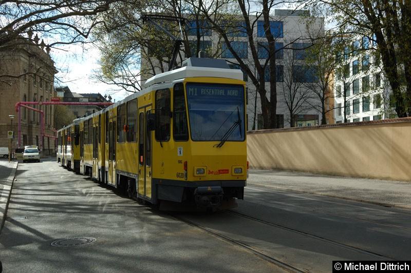 Bild: 6020 + 6022 als Linie M1 an der Haltestelle Am Kupfergraben.