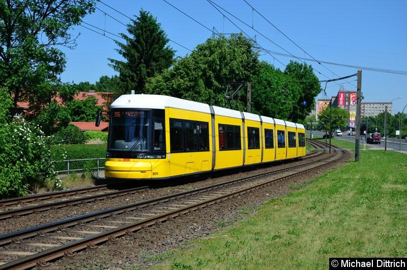 Bild: 8014 als Linie M6 kurz vor der Haltestelle Landsberger Allee/Rhinstr.