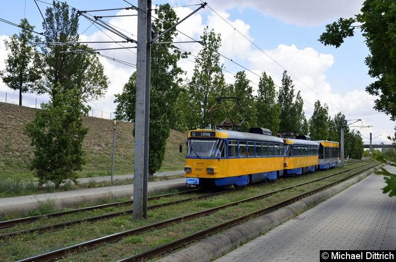 2130+2161+925 als Linie 16 kurz vor der Haltestelle S-Bahnhof Messe.